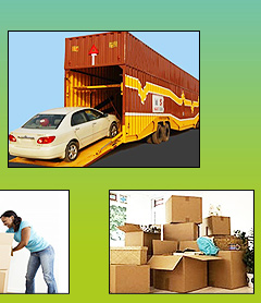 Noida Movers & Packers